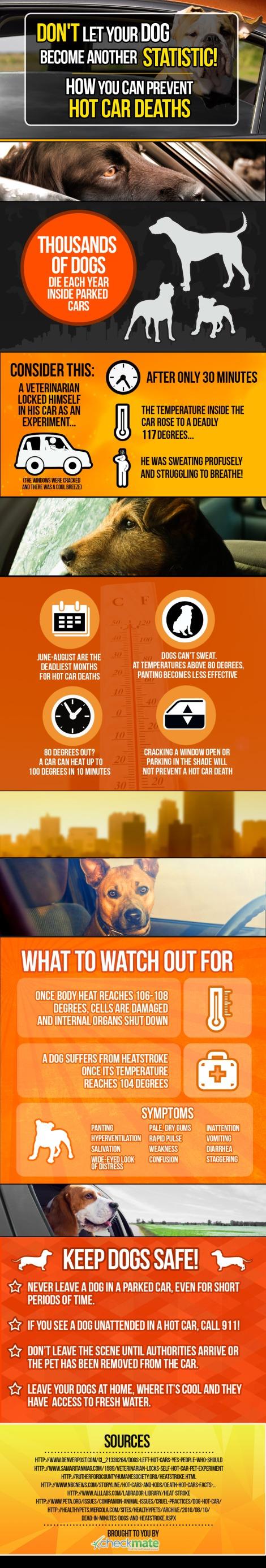 hot-car-pets