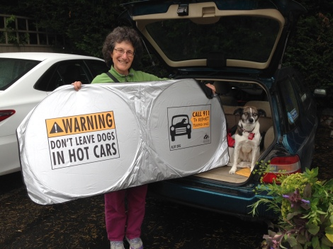 Sheila Markman and Josie with ALDF Car Shade