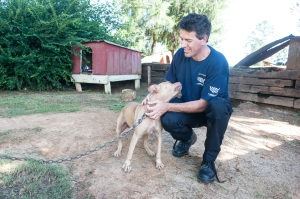 AL Dogfighting Rescue